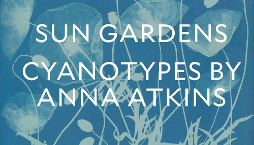 Sun gardens, cyanotypes by Anna Atkins, éditions the New York public library