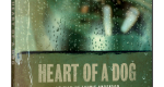 Heart of a dog, de Laurie Anderson, DVD Tamasa